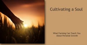 Cultivating a Soul