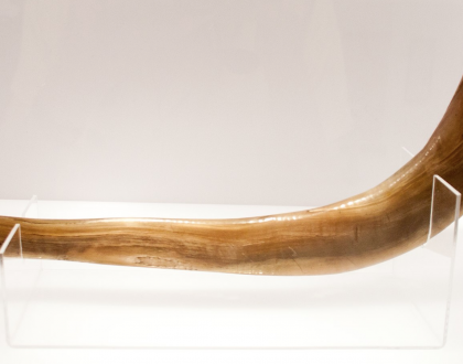 Five Fast Facts About Shofars